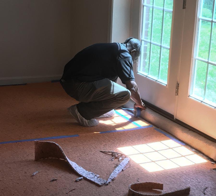 Carpet Cleaning Arlington Va Same Day Service