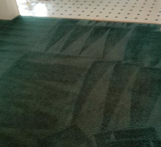 Carpet Deep Cleaning Arlington